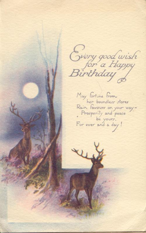 """My dear little cousin Dorothy,  I am sending you this card to wish you a happy birthday. I am staying quite near to Daddy's Hospital & see him every day. I am sure you wish you could do so, he is looking so well & such a brown face & wears a pretty bright blue suit of clothes with a red tie. Auntie Elma is here too & her doggie who has such romps with a little black kitten. Little Gladys who was in Daddy's hospital has gone to the """"Band of hope"""" tea to-day. Love to Mummy &..."""