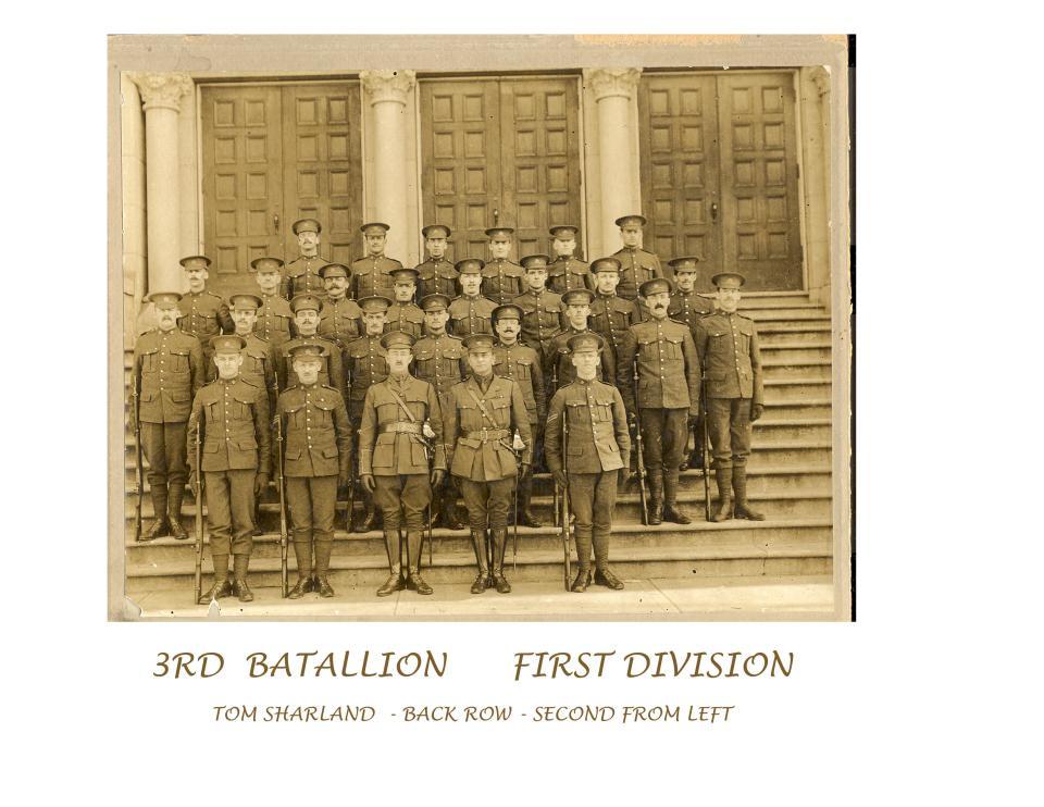 3rd Batallion, 1rst Division